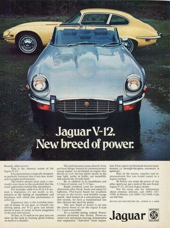 1973-jaguar-v-12-e-type-2_2-convertible.jpg