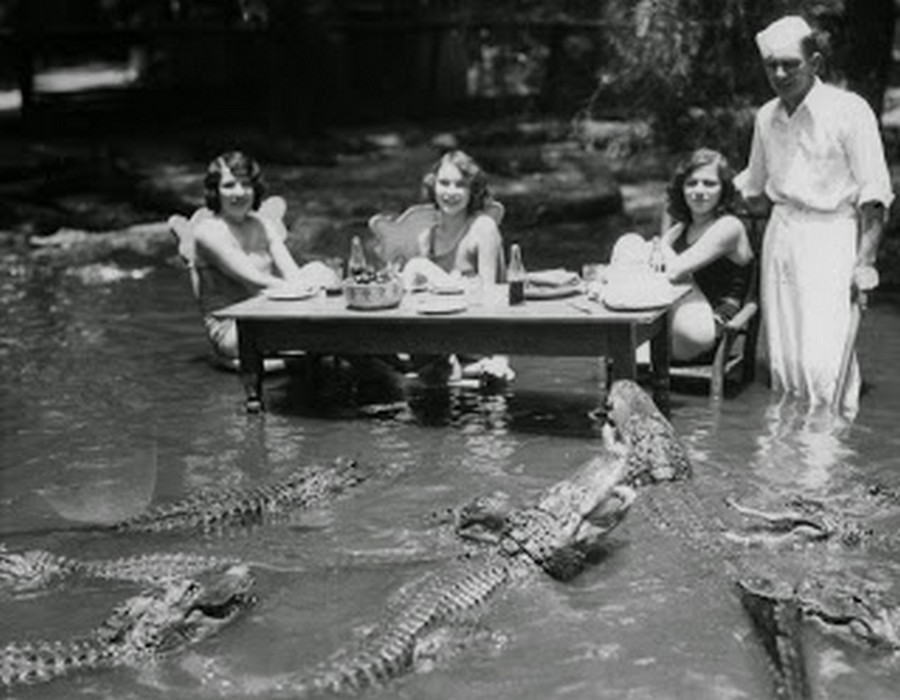 los_angeles_alligator_farm_1920s_02.jpg