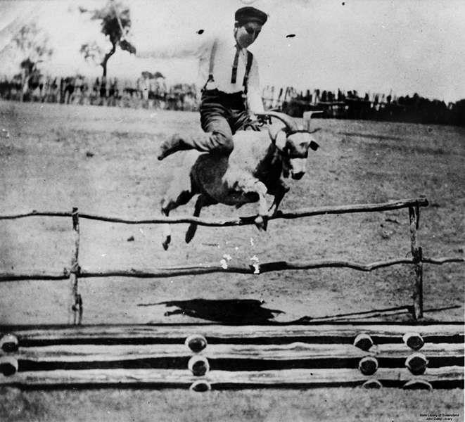 1905_kecske-akadalyverseny_ausztraliaban.jpg