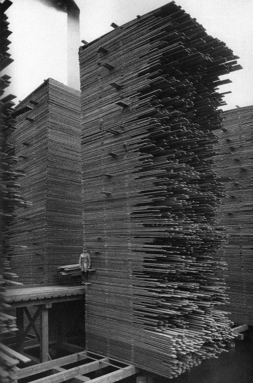 1919_egy_seattle-i_fafeldolgozo_uzem_udvara.jpg