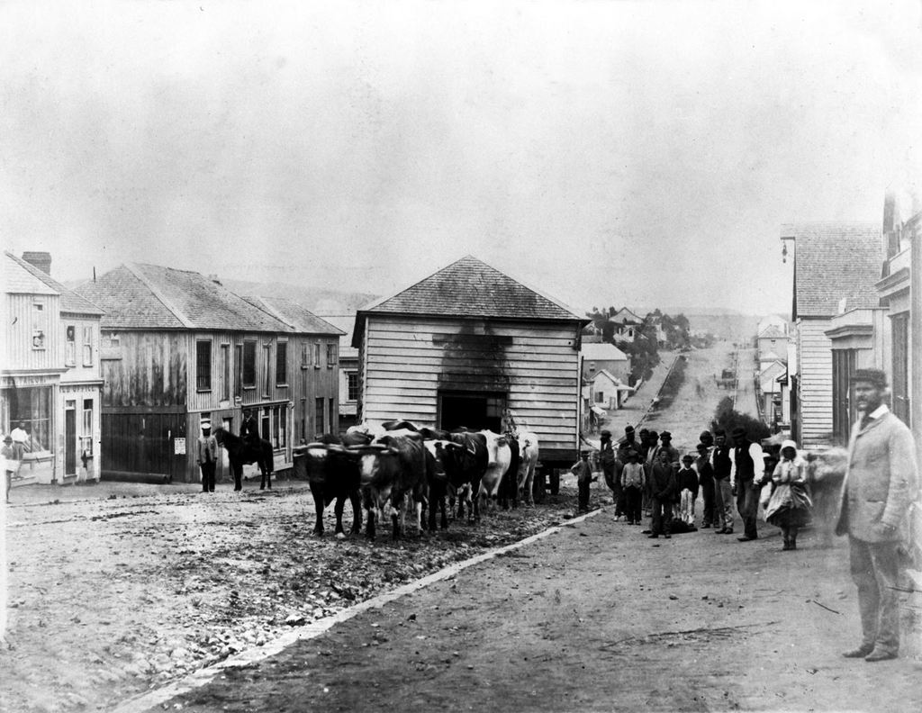 1860-as_evek_hazkoltoztetes_uj-zelandon.jpg