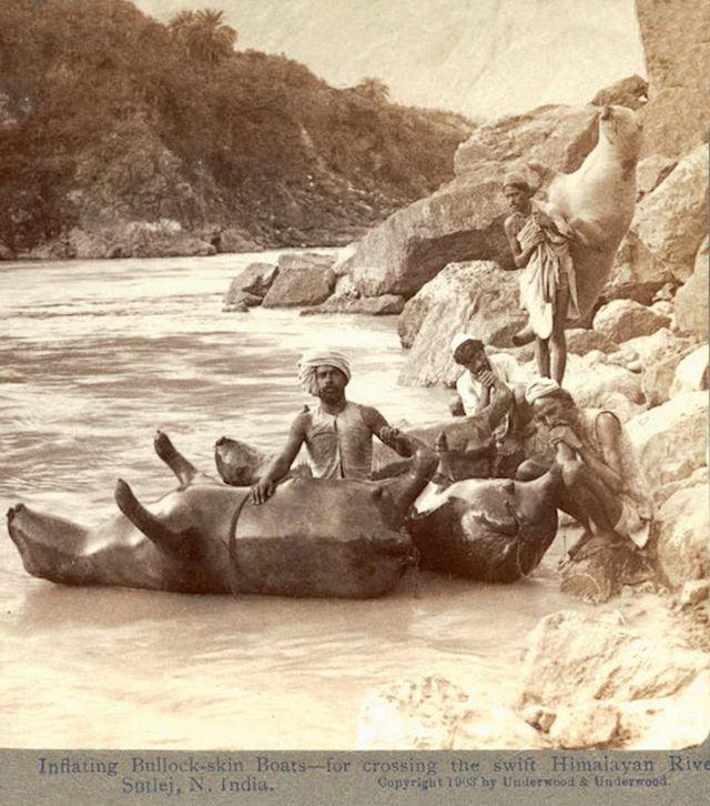 1903_felfujt_okorbor_mint_tutaj_egy_himalajai_folyon.jpg