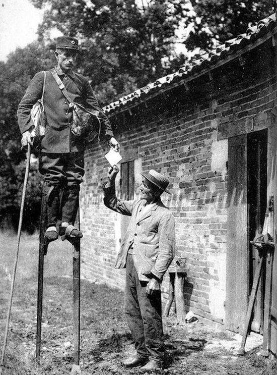 1905_golyalabas_postas_franciaorszagban_nem_viccbol_hanem_a_saros_mocsaras_videk_lekuzdesere_hasznaltak.jpg