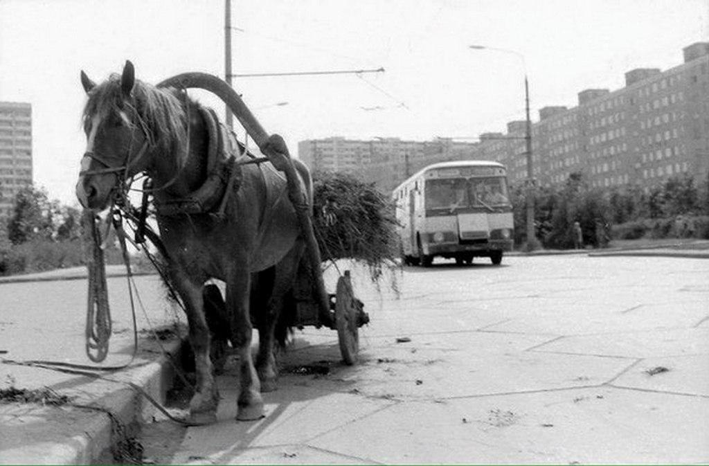1970_moszkva.jpg