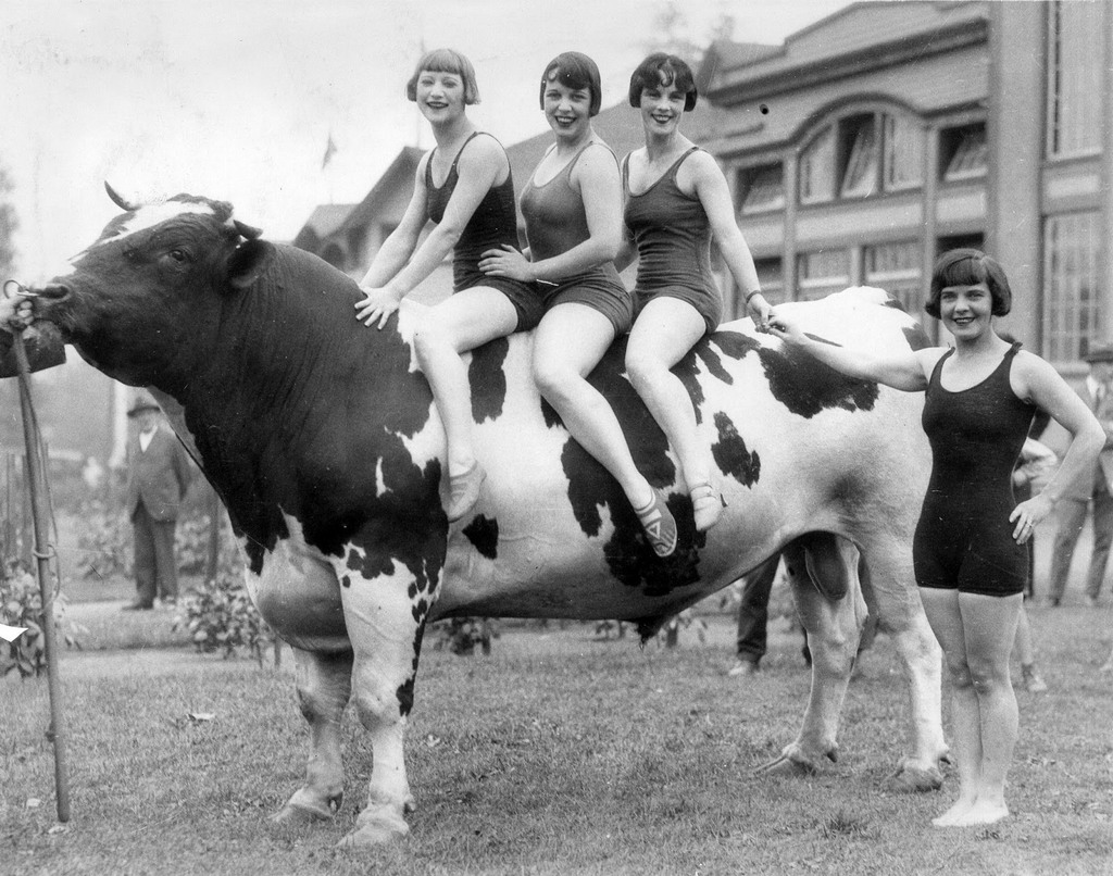 1927_women_in_bathing_suits_posing_with_a_prize_bull_vancouver.jpg