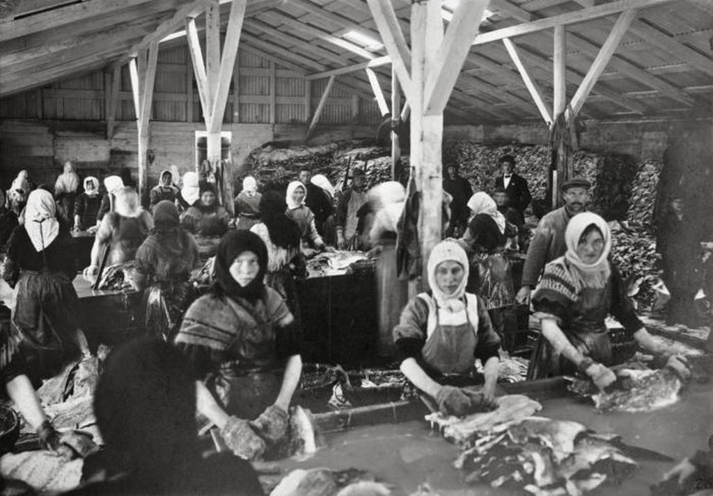 1911_halfeldolgozasahoz_1911-ben_reykjavik_izland.jpeg