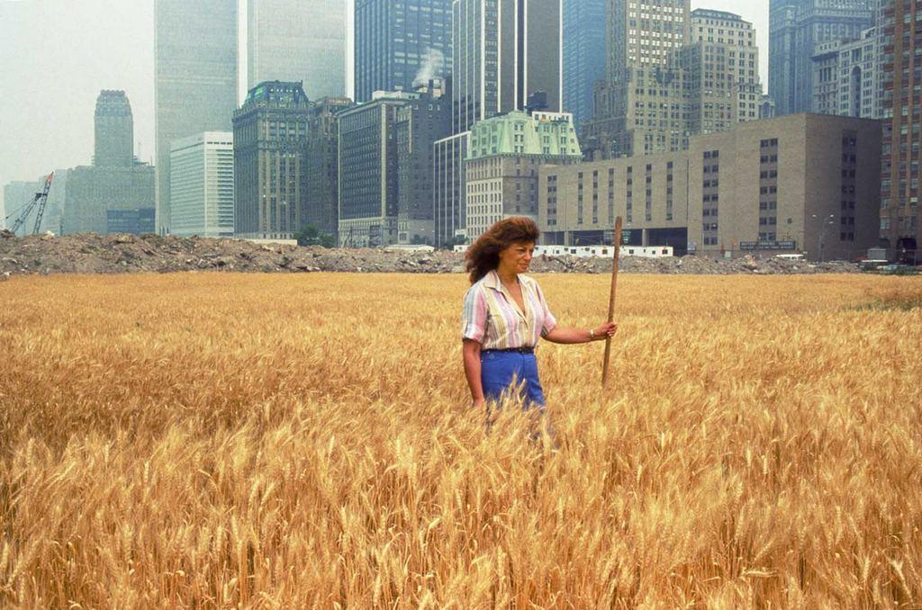 1982_a_wheatfield_in_the_heart_of_manhattan.jpg