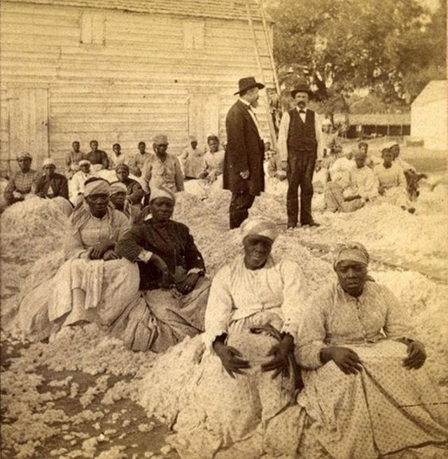 1866_a_rare_photograph_of_a_group_of_women_sitting_on_piles_of_cotton_with_two_white_male_overseers.jpg