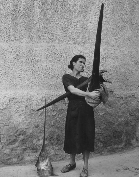 1951_no_hordozo_kardhalfejet_cartagena_spanyolorszag.jpeg