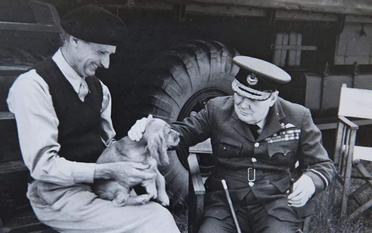 1944_general_bernard_montgomery_and_winston_churchill_play_with_montgomery_s_dog_rommel.png