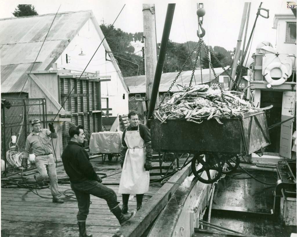 1965_unloading_king_crab_in_seldovia_ala.jpg