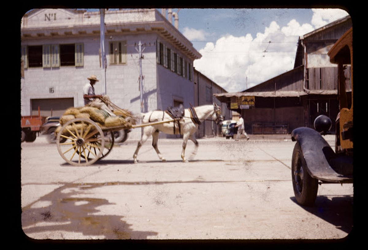 everyday_life_of_cuba_in_the_1950s_2832_29.jpg