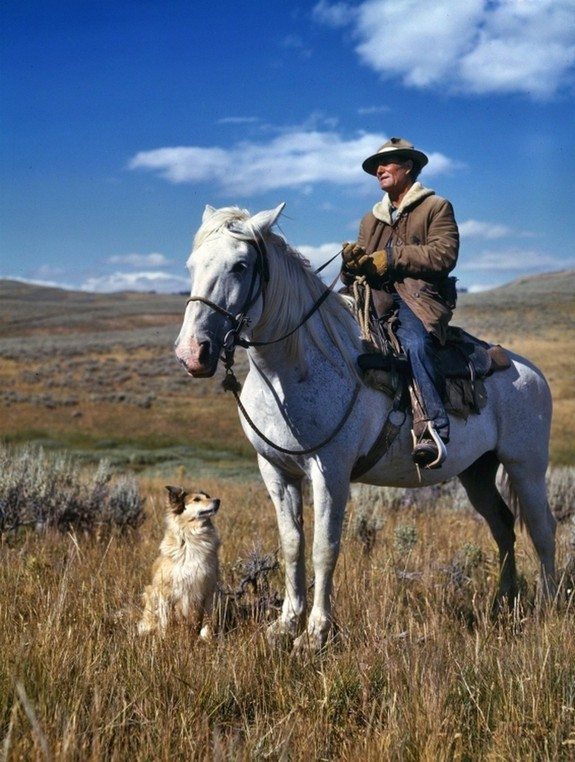 1942_shepherd_on_horse_with_dog_gravelly_range_madison_county_montana.jpg
