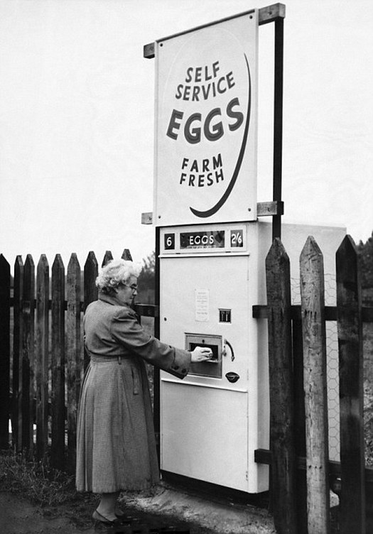 1960_derbyshire_england_uk_a_woman_collects_pre_packed_eggs_from-a.jpg