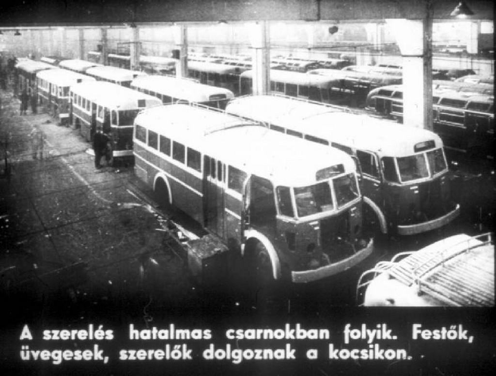 busz53.jpg