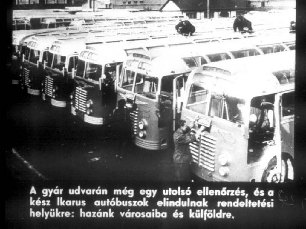busz56.jpg
