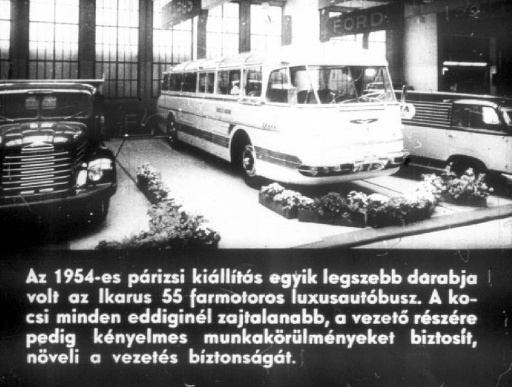 busz59.jpg