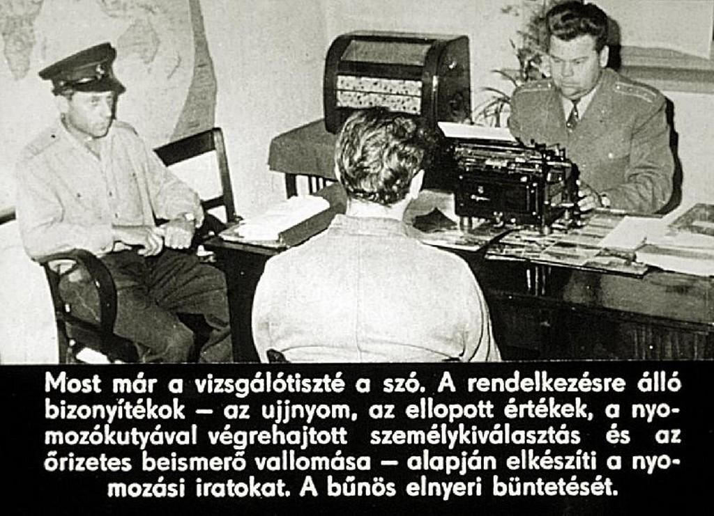 29.jpg