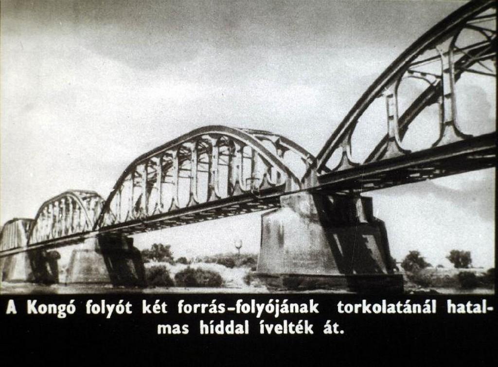 082.jpg