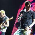 Kölykök és a Red Hot Chili Peppers