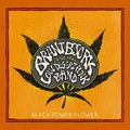 Ganjafüstbe burkolt csörgőkígyócsizmák: Brant Bjork & The Low Desert Punk Band - Black Power Flower (2014)