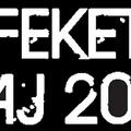 Kellemes felüdülés, rétegzenékkel: Fekete Zaj Fesztivál @ Sástó, 2011. augusztus 4-6.