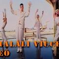 TOP 15 haláli vicces videó