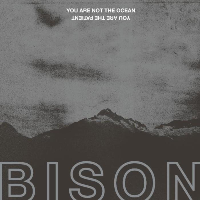 bison_bc_front.jpg