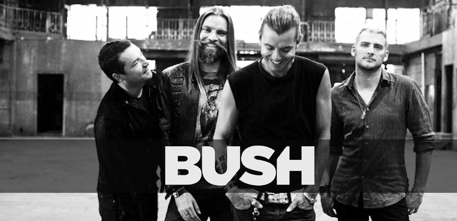 Bush 2014.png