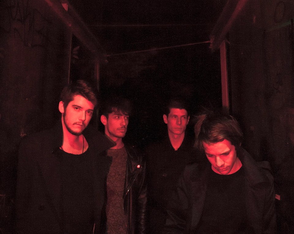 middlemist_red_2016.jpg