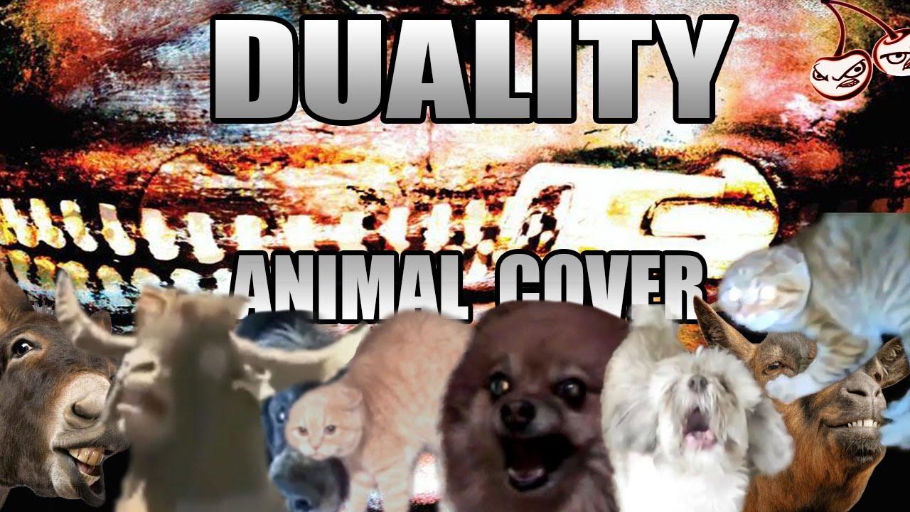 dualityanimal.jpg