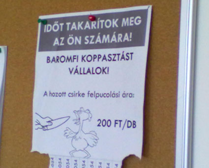 baromfi_koppasztas_1351612817.jpg_425x342