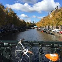 UTAZÁS | Holland furcsaságok