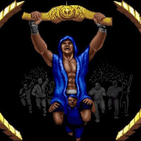 '3D World Boxing' champion