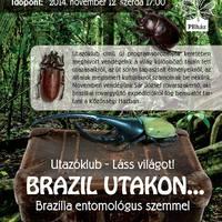 Brazília entomológus szemmel