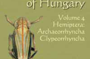 Györffy György, Kiss Balázs, Koczor Sándor, Orosz András: Checklist of the Fauna of Hungary. Volume 4, Hemiptera: Archaeorrhyncha, Clypeorrhyncha