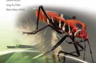 Rédei Dávid,  Jing-Fu Tsai, Man-Miao Yang: Heteropteran Fauna of Taiwan: Cotton Stainers and Relatives (Hemiptera: Heteroptera: Pyrrhocoroidea)