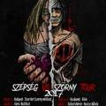 PHOENIX RT - Szépség VS Szörny Tour 2017