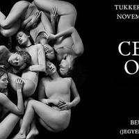 DÜRER KERT - November 2: Exkluzív Celeste buli