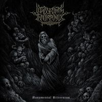 LABYRINTH ENTRANCE - Monumental Bitterness (2018)