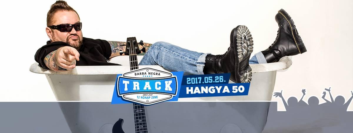 hangya50.jpg