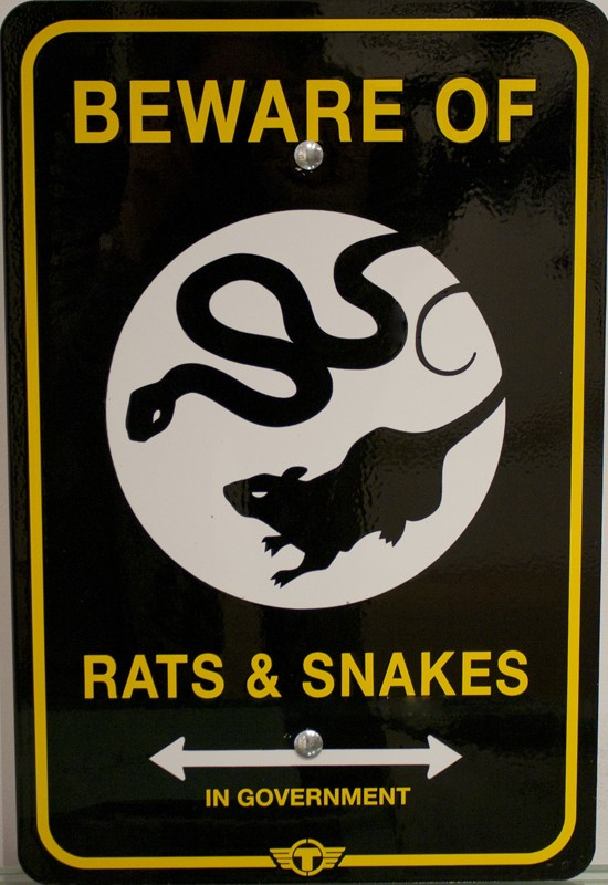 beware_of_rats_and_snakes_trustocorp.jpg