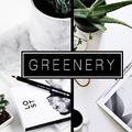 Az év színe: greenery