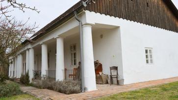 Levendulaház: egyedülálló közösségi kezdeményezés Dabason