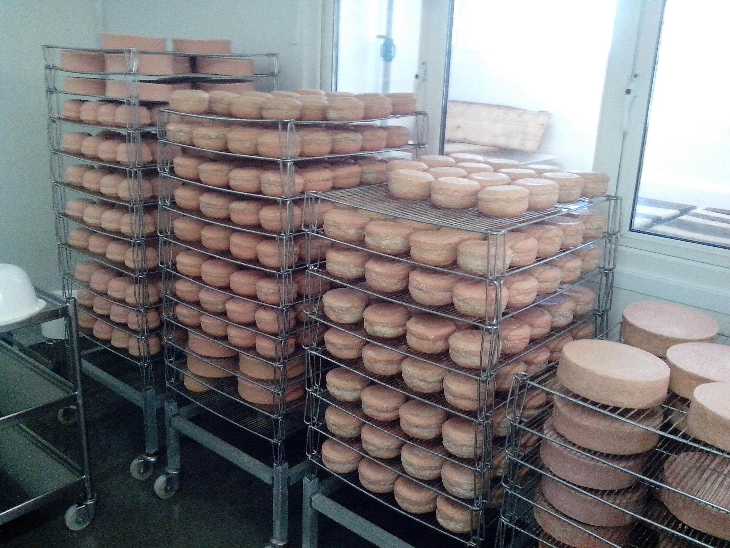 a büdös sajtok szobája