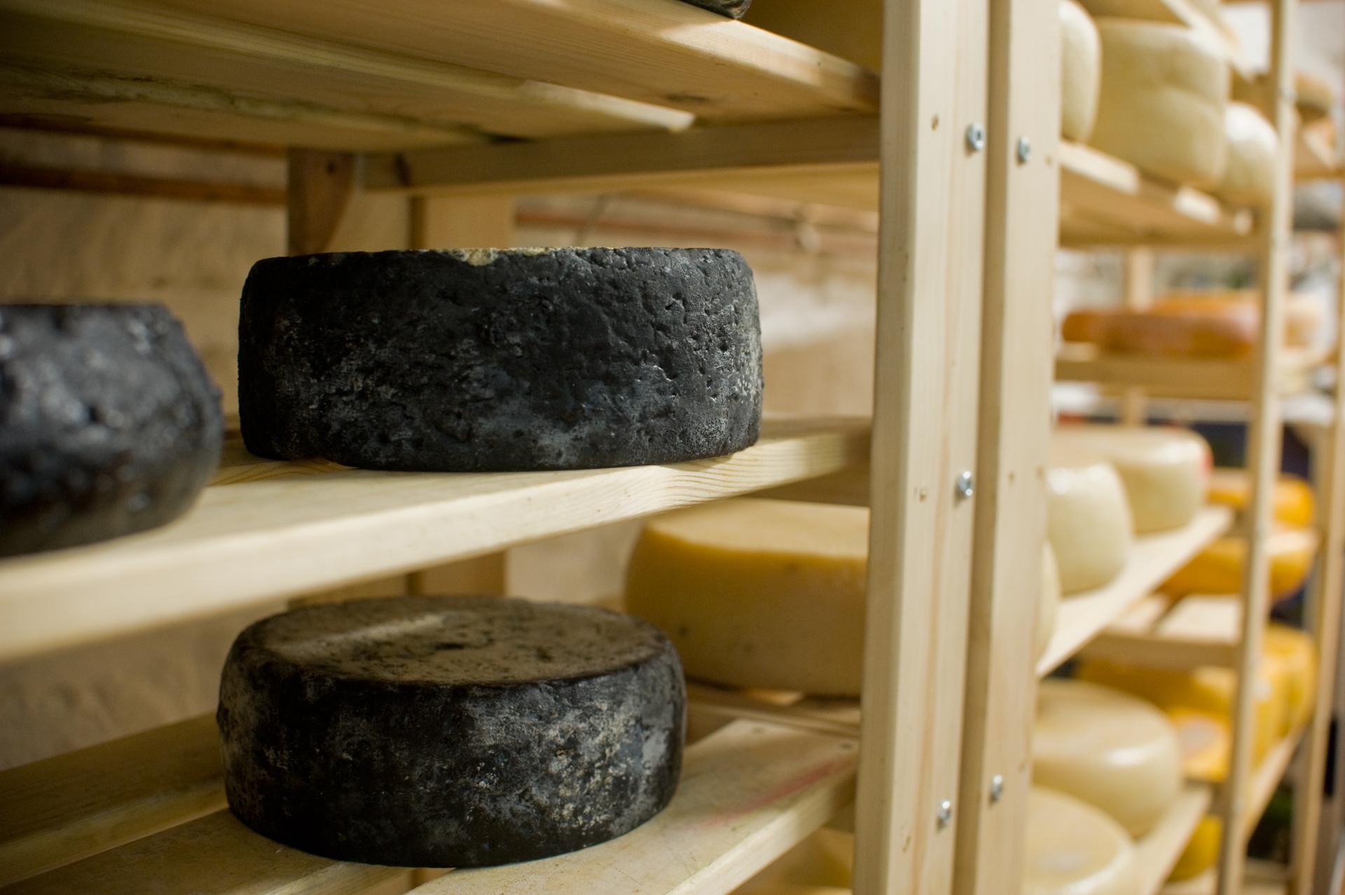 Negro érlelt sajtok a polcon