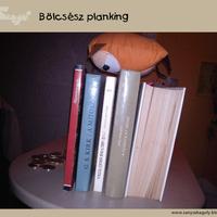 Bölcsész planking