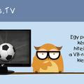 VB vs. TV
