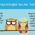 Kineziológiai lecke Seronnal