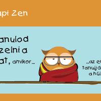 Napi Zen